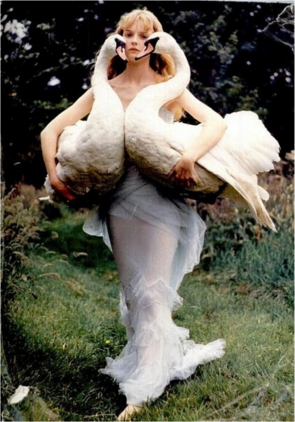 Swan-2-717x1024