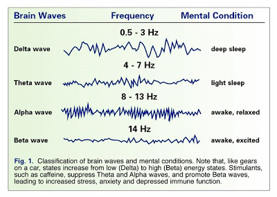 L-theanine_Alpha_Waves